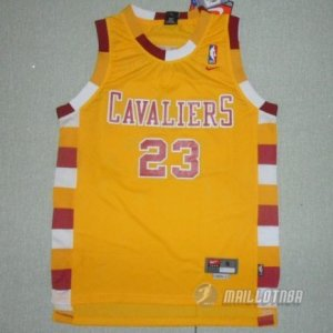 Maillot retro de James Cleveland Cavaliers #23 Orange